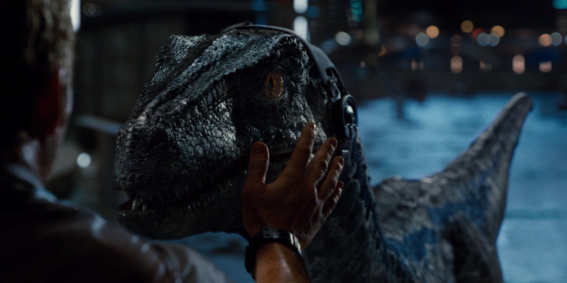 Best and worst moments of CGI in the JP quadrilogy? Jurassic-world-movie-screencaps.com-12429
