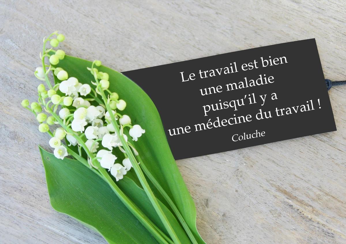 Mardi 1er mai Citation-coluche