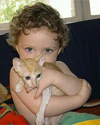 Необычные и редкие породы кошек и собак Main1