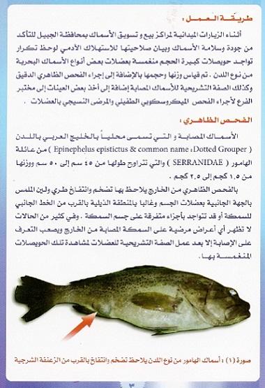 أمراض الاسماك – مرض حقيبة الحبر السوداء 9bcff_D8B5D98AD8AF_mk13567_marad3