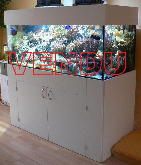 [VENDU] Aquarium 672 litres à vendre. Aquarium-a-vendre