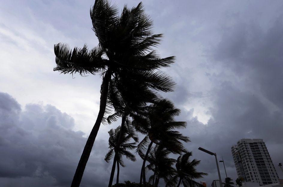 Caos en el Caribe - Página 5 535338-944-623