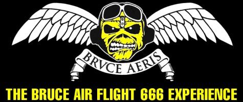 STAR DUST Bruce_air_flight_666_experience