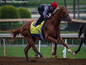 Route du Kentucky Derby/Kentucky oaks 2015 - Page 3 DortmundKYDerbyWork04252015SAZoeMetz298