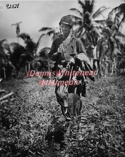 Devil's Dog : Les chiens de l'USMC dans le Pacifique  WWII-in-the-Pacific-Devil-Dog