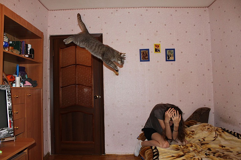 Lidojošie kaķi - Page 4 84144815