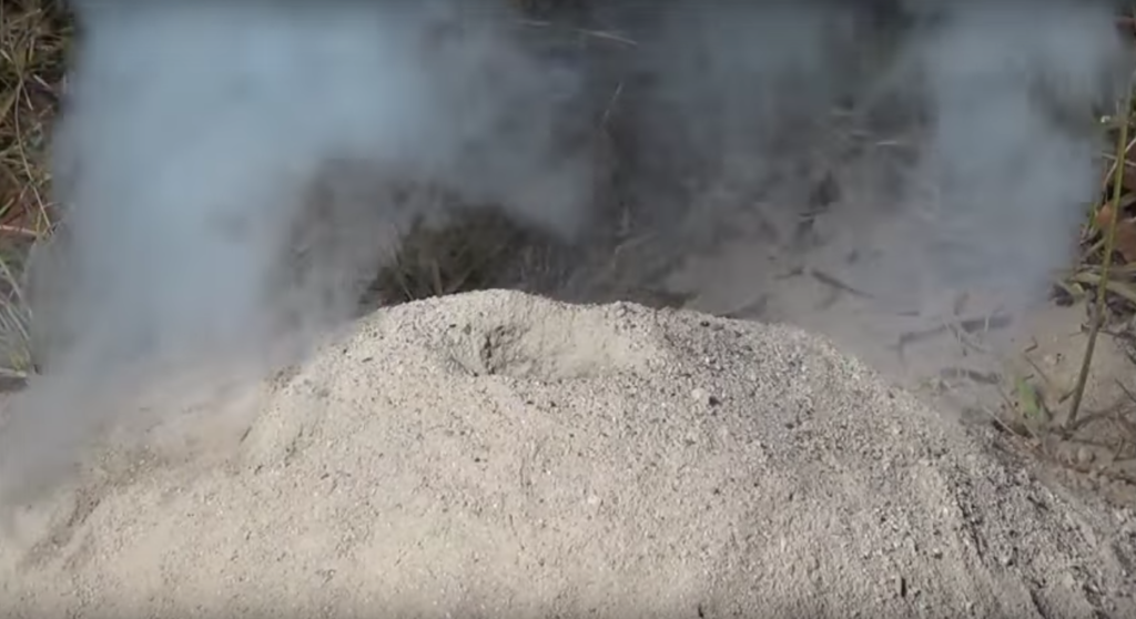 What is this?? Steaming-ant-hill-1024x558