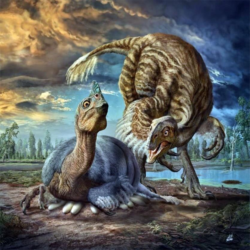 Comment les dinosaures ne transformaient pas en omelette les œufs qu'ils couvaient ? By Gurumed.org Beibeilong