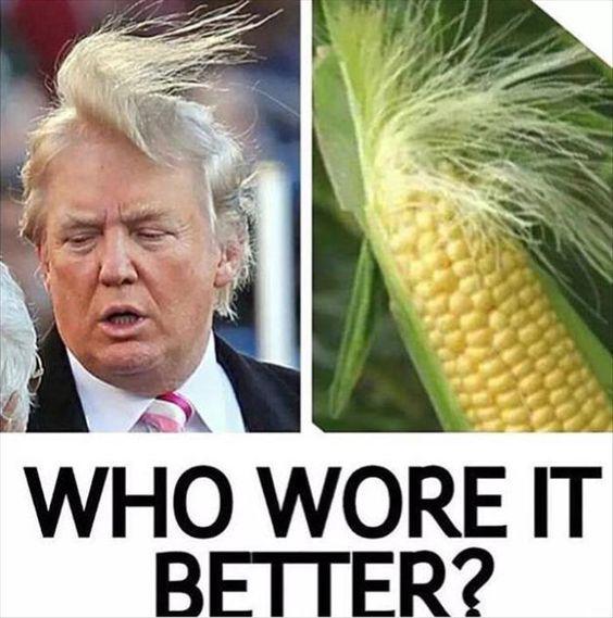 Donald Trump - Stránka 3 Donald-Trump-Jokes-1
