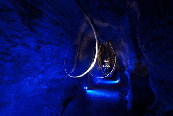 Waitomo Glowworm Caves Waitomo-glowworm-cave-new-zealand-805901