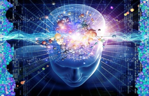 Вибрационная подпись человека. Как вы творите свою реальность Joygame-Enjoy-Teknoloji-Bilim-Insan-Beyini