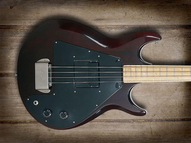 Fanned Pickup - Spalt Instruments Gibson-grabber-640-80