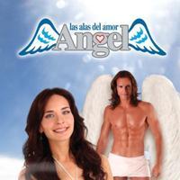 Μετράμε λογότυπα με καρδούλες.  Angel-las-alas-del-amor_med