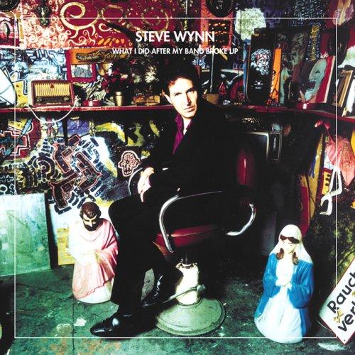 Steve Wynn - Página 2 8757-what-i-did-after-my-band-broke-up