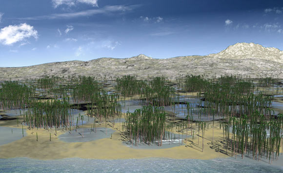Devonian Fossil Forest Unearthed in China Image_7484_1-Xinhang-Forest