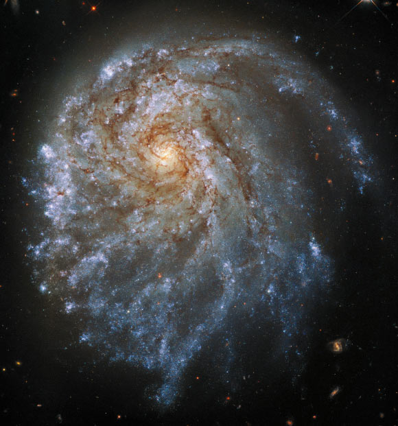 Hubble Spots Magnificent Interacting Galaxy: NGC 2276 Image_9700-NGC-2276