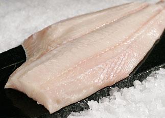 42 tipos de carnes de filete de pescados clase gourmet en imágenes Hc02-alaskan-halibut