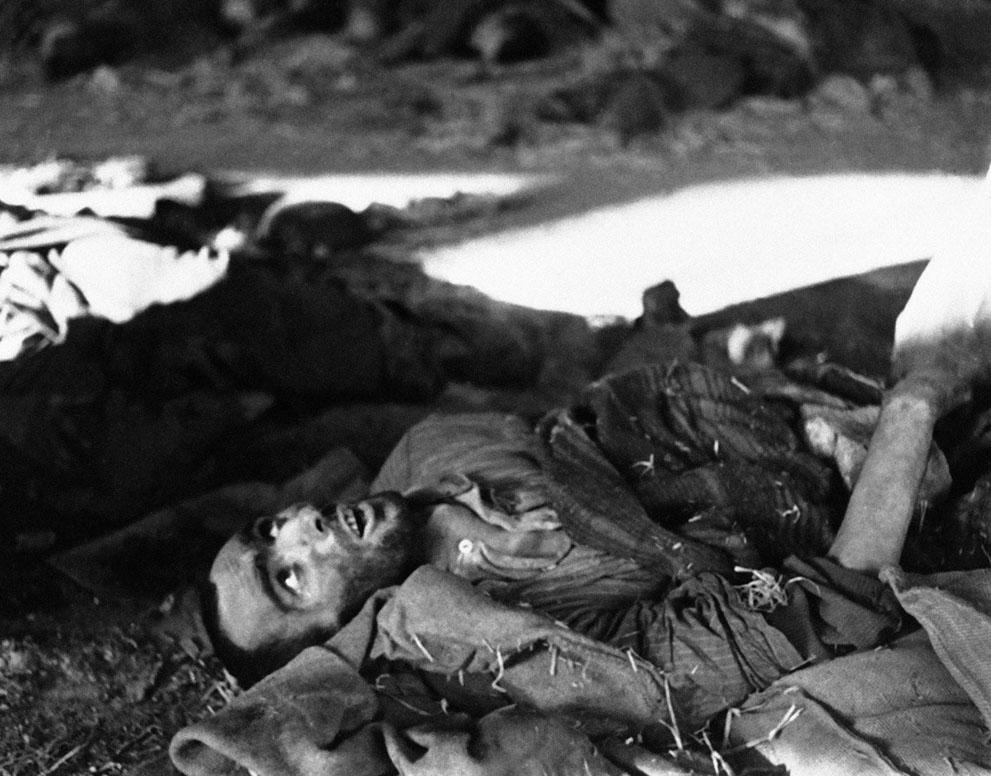 photos des camps de la mort, des ghettos, des prisonniers, des gardiens... S_w22_04181191