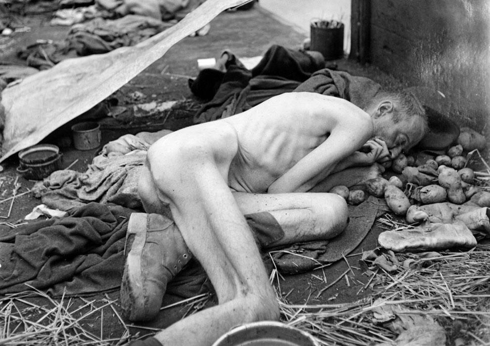 photos des camps de la mort, des ghettos, des prisonniers, des gardiens... S_w25_51406116