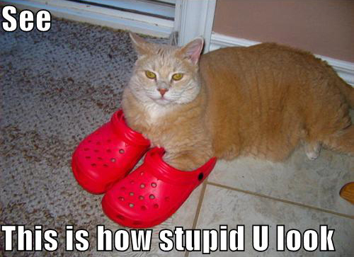panda contraception thread Lolcat-crocs
