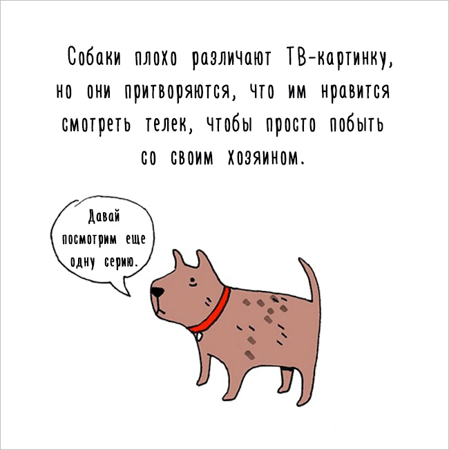 Забавное, интересное, шокирующее - Страница 6 Fakti_o_jivotnih_07
