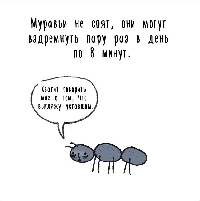 Забавное, интересное, шокирующее - Страница 6 Fakti_o_jivotnih_17
