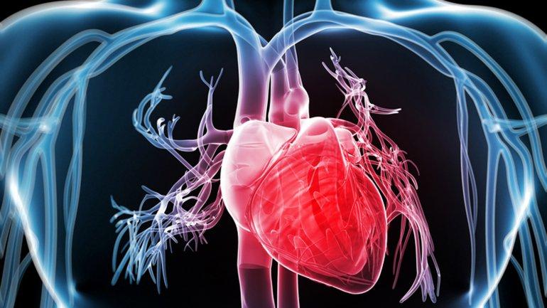 Ultimos Avances en Ciencia y Salud - Página 12 0013709390