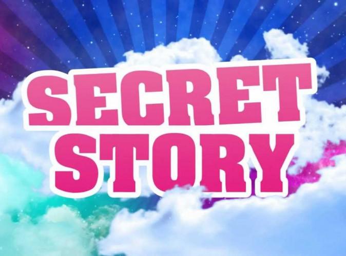 La conciergerie de JEREMSTAR Secret-Story-la-saison-9-se-precise_portrait_w674