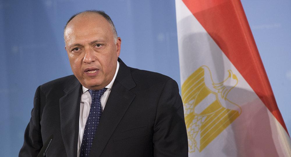 شكري: التوافق السياسي الليبي يمر عبر اعتماد البرلمان حكومة الوفاق 1017417122