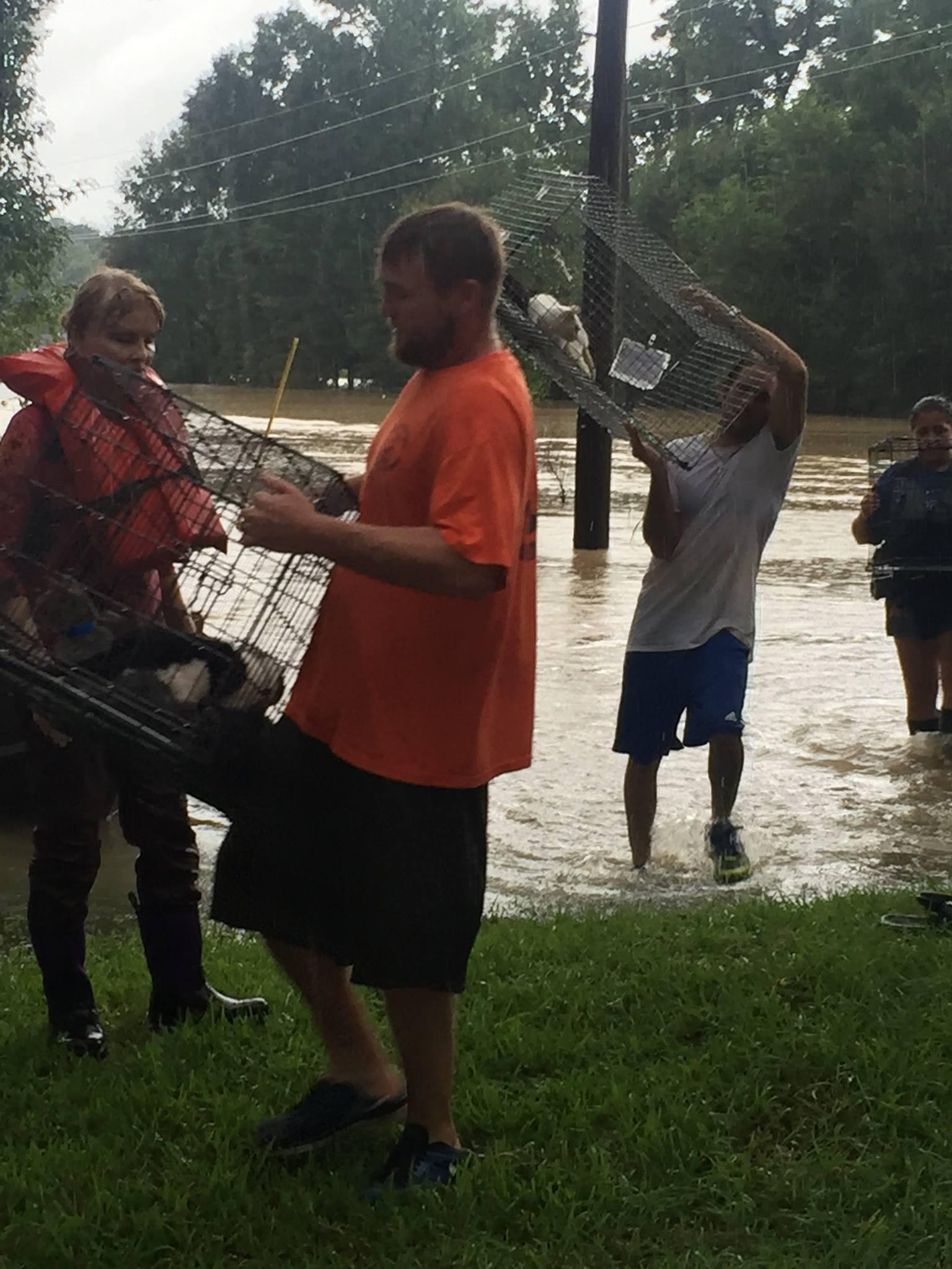 Louisiana Flood Update 13920512_1070483856369074_7001050384956947777_o