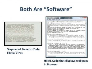 If DNA Is Software, Who Wrote The Code? Comparison-300x225