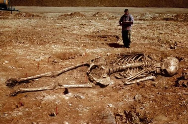 Why Are We Not Talking About The Reality of Giant Humanoid Skeletons? Here Are A Few Examples Skeletons-759x500