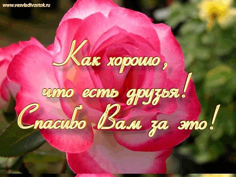Поздравляем С Днем Рождения Анжелику Николаевну и Татьяну Георгиевну! 6beb823c52d6369ccb1f7133a719b5e0