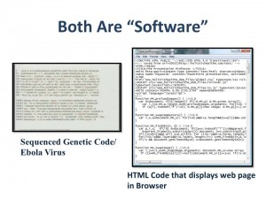 The Mind and DNA | If DNA Is Software, Who Is The Programmer? Comparison-300x225