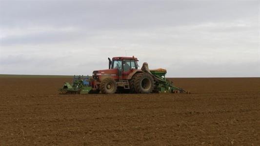 Comment cultiver du blé sans apport en engrais et produits chimiques Fiches_2822013_622_476