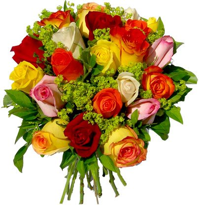 Minouche Bouquetsdefleurs5