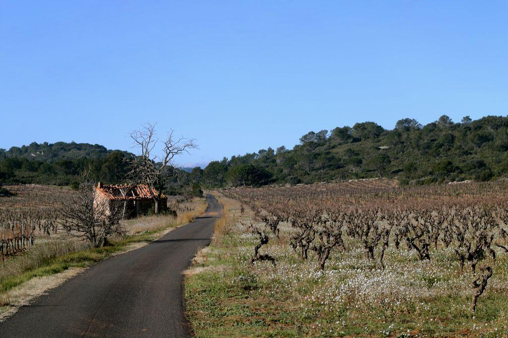 CR en images d'une vadrouille hivernale en Languedoc  14