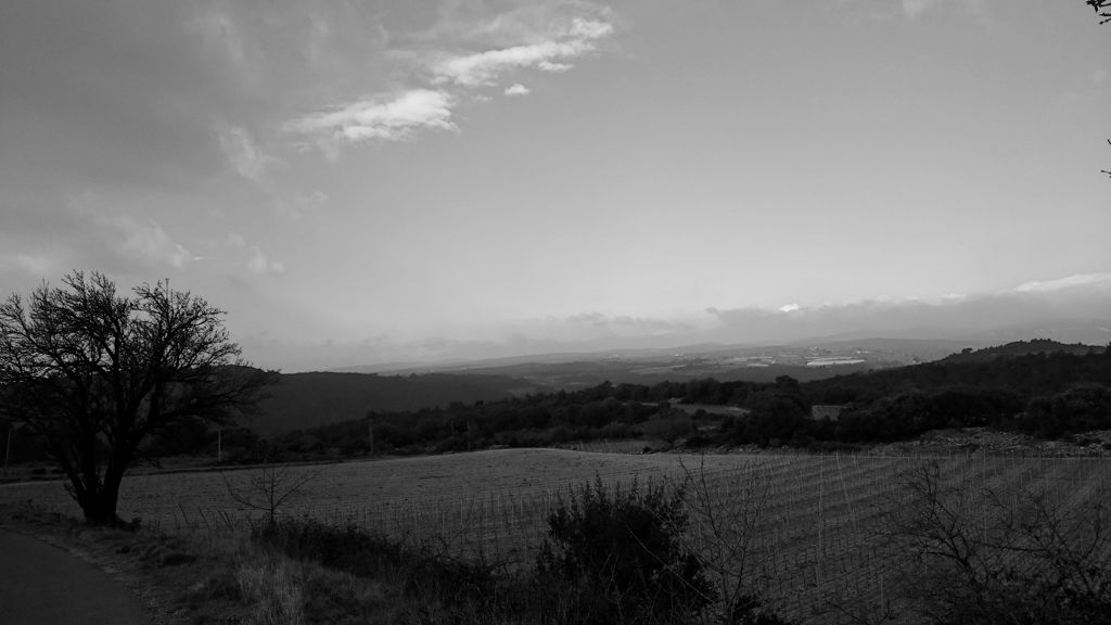 CR en images d'une vadrouille hivernale en Languedoc  18