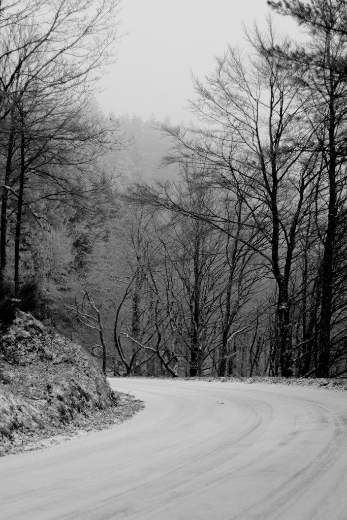 CR en images d'une vadrouille hivernale en Languedoc  28