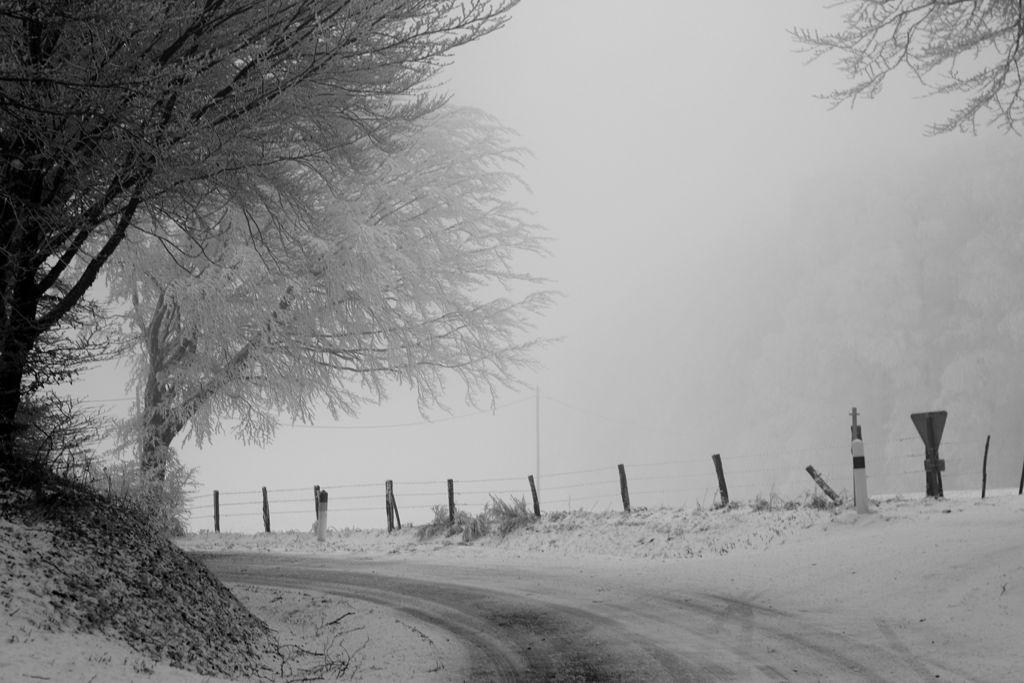 CR en images d'une vadrouille hivernale en Languedoc  31
