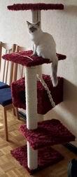 Arbres à chats Arbrechat2