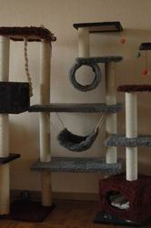 Arbres à chats Arbrechat4