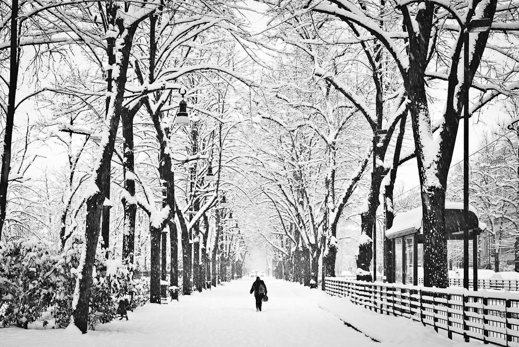 Torino sotto la neve Lrweb-8890