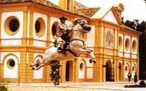 Cheval : Les différentes races existantes au Moyen Age Jerez-01