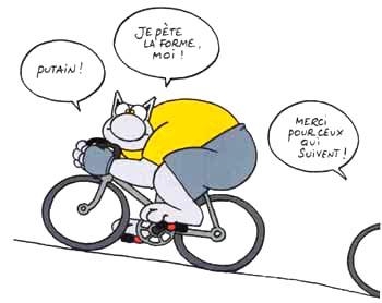 Humour et Politique - Page 7 Humour-chat-velo