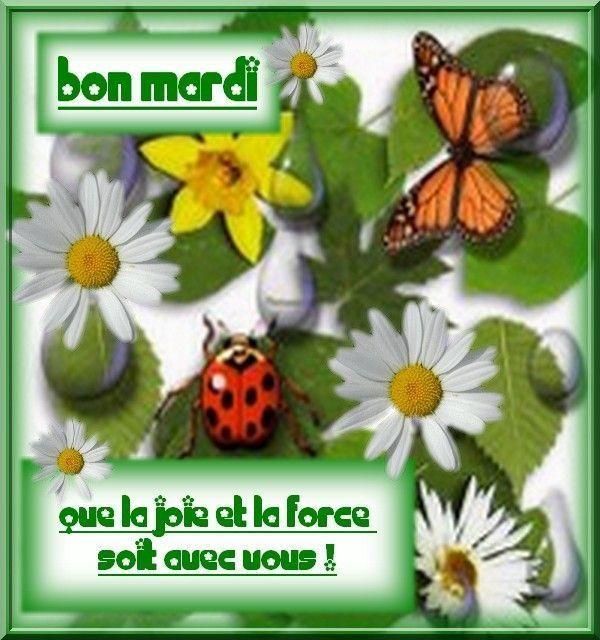 Mardi 1er Mars C4c5f8ea