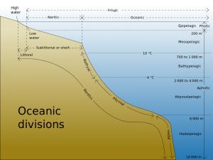 பூமியில் மனிதன் காலடி பதிக்க முடியாத இடம் Oceanic_divisions-300x225