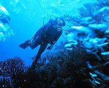 பூமியில் மனிதன் காலடி பதிக்க முடியாத இடம் Scuba-diver