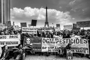 France Decides to Opt Out of Vaccines Monsantos-March-France1-300x200