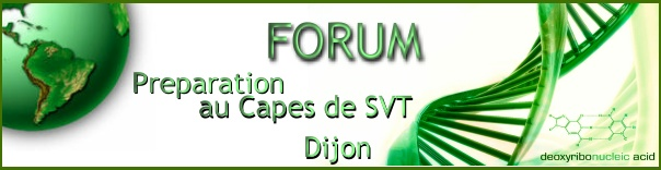 Prepa Capes Dijon